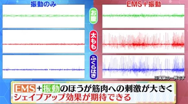 EMSと振動の筋肉刺激データ