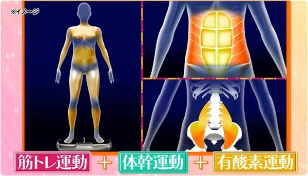 筋トレ体幹有酸素運動